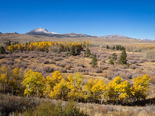 Eastern Sierra fall daytrip