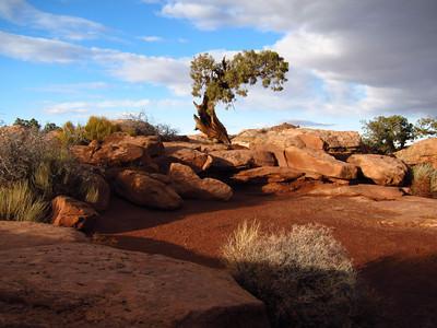 Moab, UT - 2011