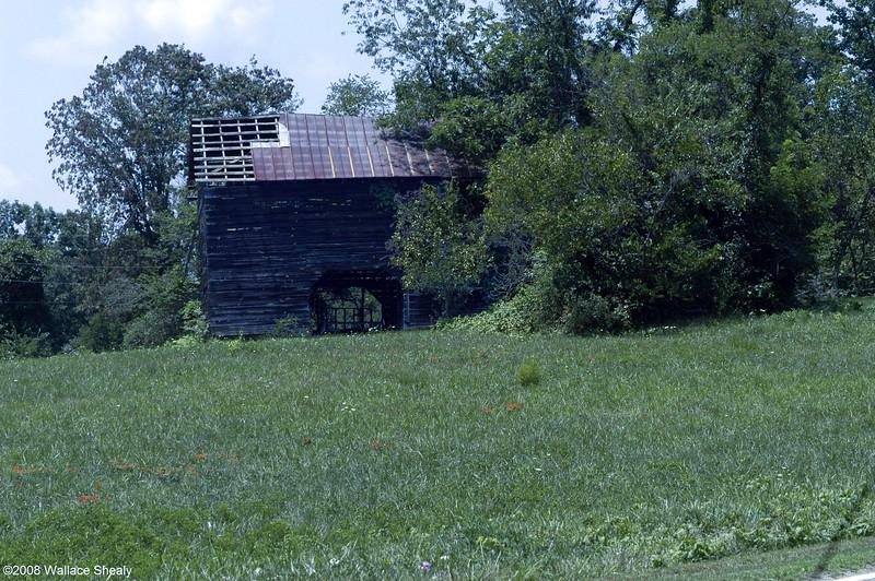 Barns Summer 2008 007