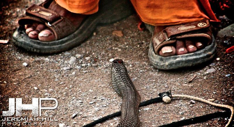 """Cobra and Toes"", Rishikesh, Uttuaranchal, India, 2007 Print IND371-079"