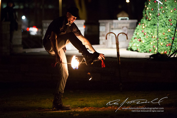 Twinsburgh Luminocity 2014 Festival of Lights