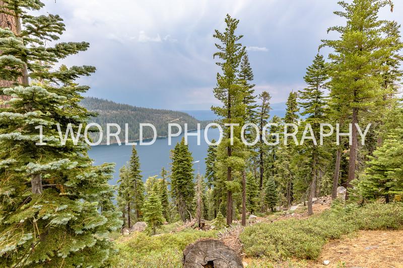 San Fran_Lake Tahoe Trip 2017-166-14.jpg