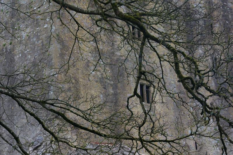 blarney-castle-29.jpg