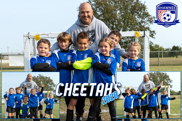 SSA Cheetahs Oct 2020