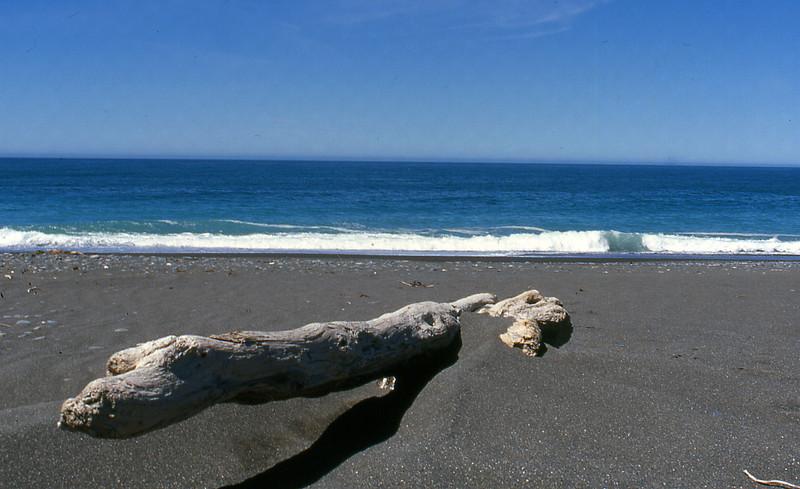 NZ_086.jpg
