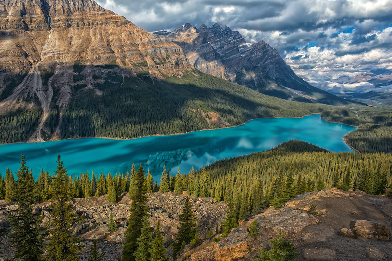 Peyto Lake Reflections
