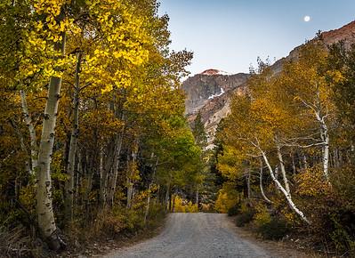 Highway 395 East Sierras