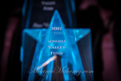 Sonoma Star Awards 2017