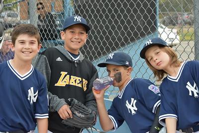 Minors - Yankees - 2016