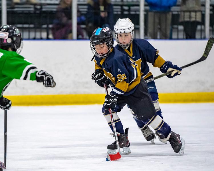 2019-02-03-Ryan-Naughton-Hockey-70.jpg