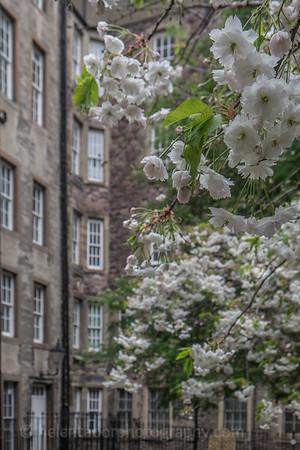 Edinburgh-26.jpg