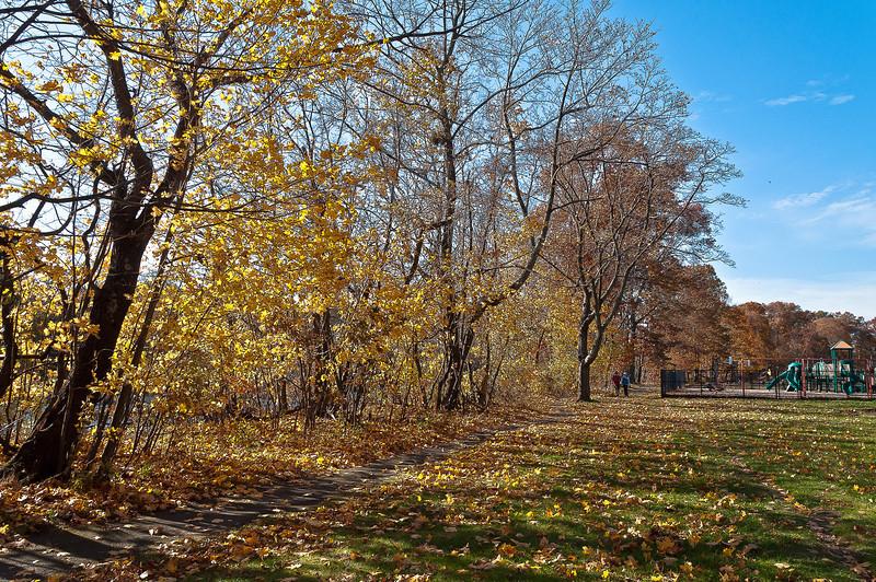 fall14.jpg