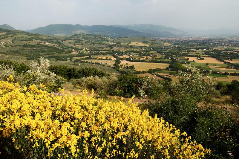 Trek from Assisi to Spello