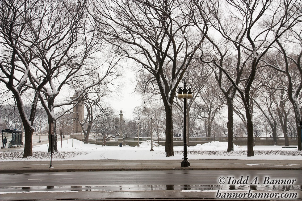 Grant Park, Chicago in winter.