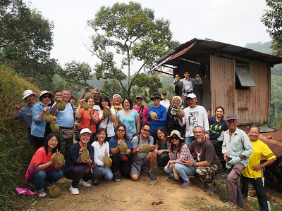 2019_08_18 Durian Orchard, Bentong, Tras