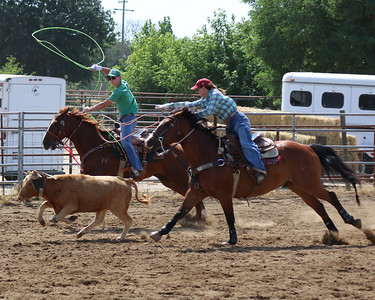 Roping Kelley Pile 2014