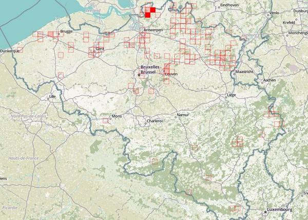 Observations validées en Belgique (2012-2017)