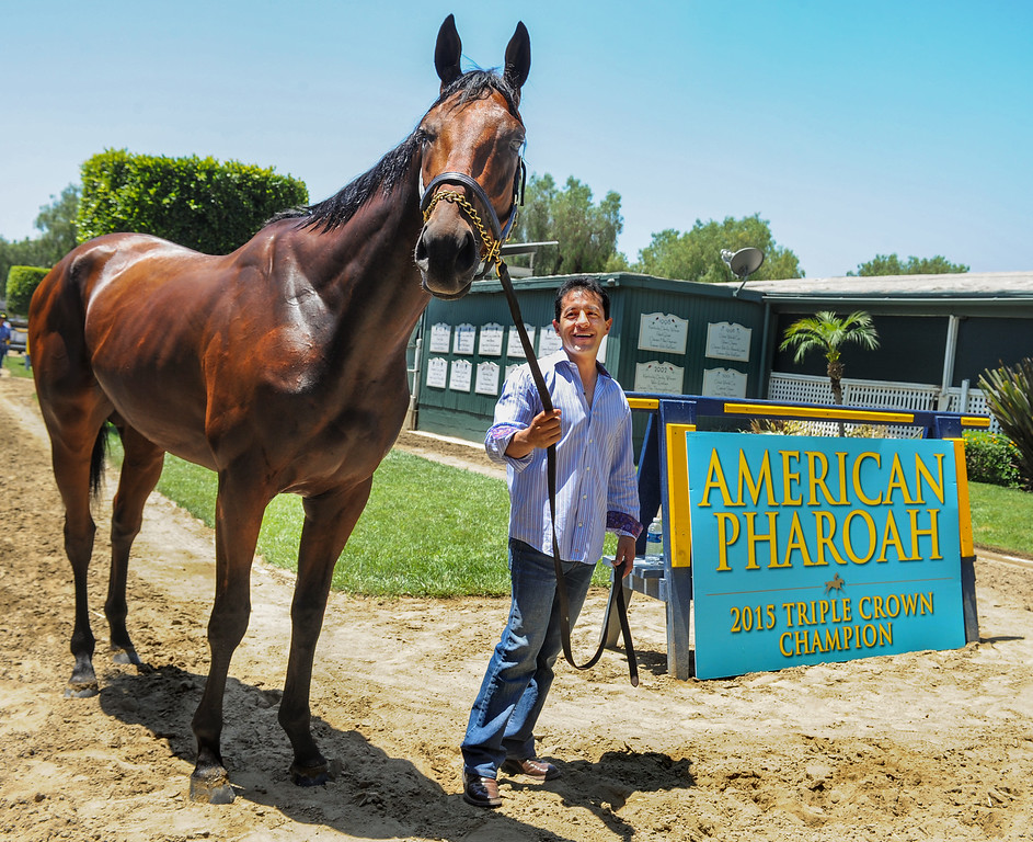 . Racehorse American Pharoah returned to Southern California, Thursday, June 18, 2015, for the first time since breaking a 37-year Triple Crown drought by winning the Kentucky Derby, Preakness and Belmont Stakes. American Pharaoh was aboard an equestrian airline from Louisville, Ky., to Ontario International Airport, where he will be loaded into a van and driven to Santa Anita Park.(Photo by Walt Mancini/Pasadena Star-News)