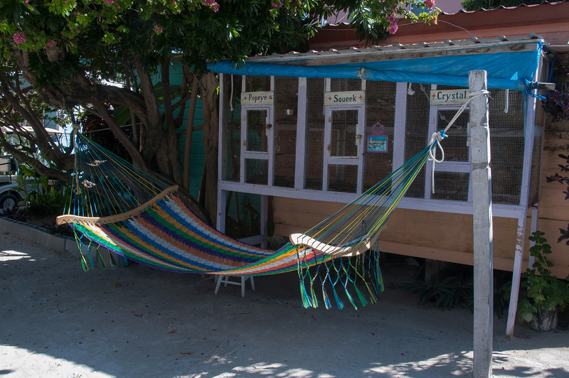 Colorful hammock in Caye Caulker, Belize