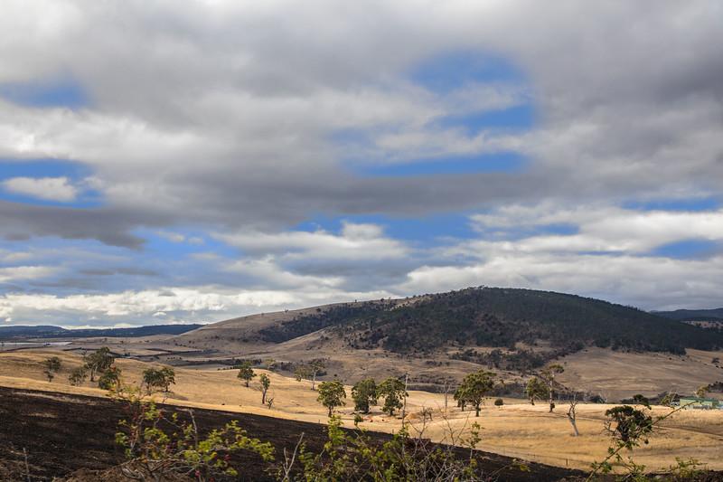 Tasmanian Landscape-.jpg