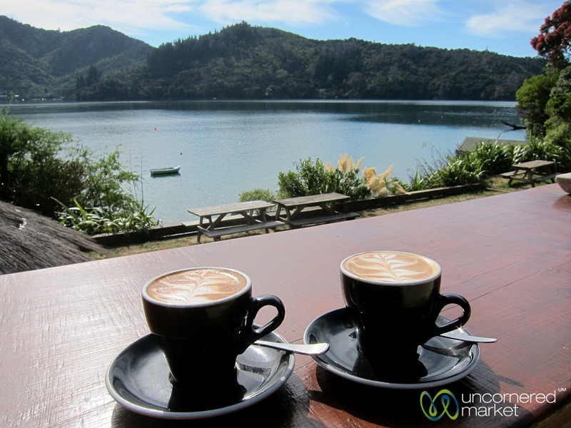 Flat White Coffees with a View - Lochmara Lodge, New Zealand