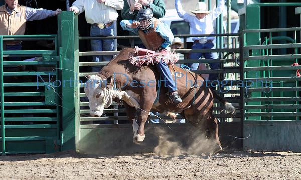 Bull Riding ~ Sunday
