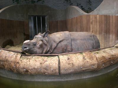 Zoo München 2010