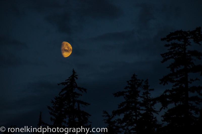 Alaska-0235.jpg