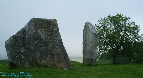 Avbury Stones