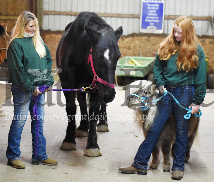 Harold Aughton/Butler Eagle: Kim Jarvis of Butler and her daughter, Emma, 14, watch as (adult horse) interact with a minature horse, Pip.