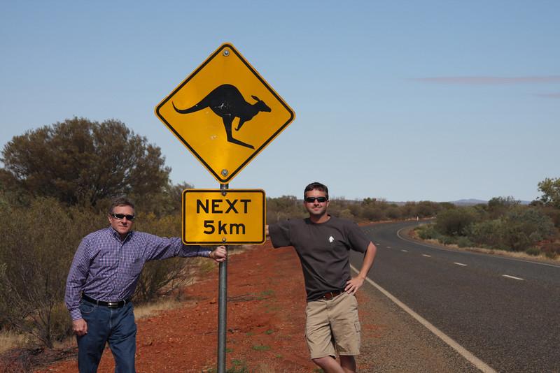 Outback Australia: Kangaroos!