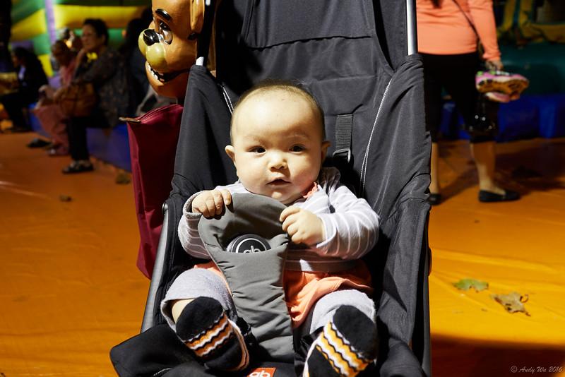 pumpkin__20.jpg