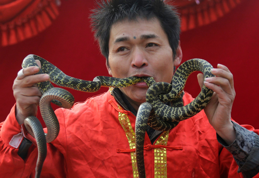 . A performer inserts two live snake heads into his mouth during a performance at the Ditan Temple Fair celebrating the Chinese Lunar New Year in Beijing February 11, 2013.  REUTERS/Jason Lee