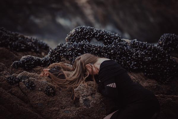 Tale of Sand & Shells