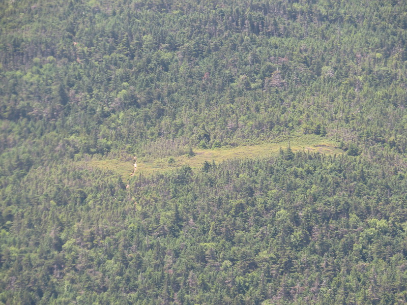 Yup, that's a trail right below Mt. Carlo.JPG