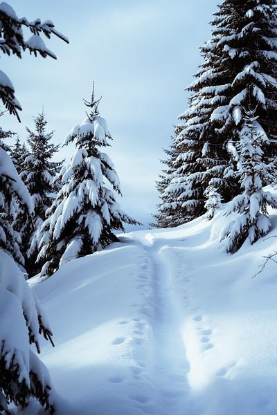 Ski Randonnée Les Gets