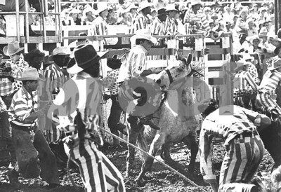 farewell-to-the-texas-prison-rodeo
