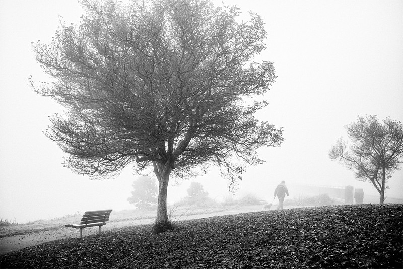 A man walking his dog on a foggy morning along Alki Beach