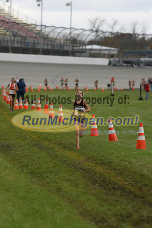 Finish Gallery 2 D1 Girls - 2013 MHSAA LP XC Finals