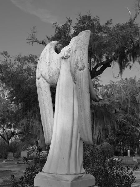 Bonaventure Cemetery, Savannah, Georgia (2).jpg