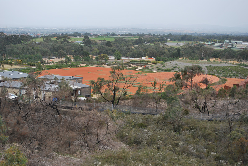 Looking down on the Cranbourne gardens.JPG
