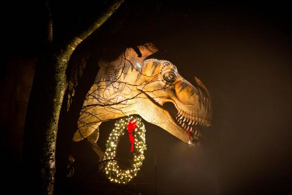 Heard Museum Trail of Lights Location Shots 2013