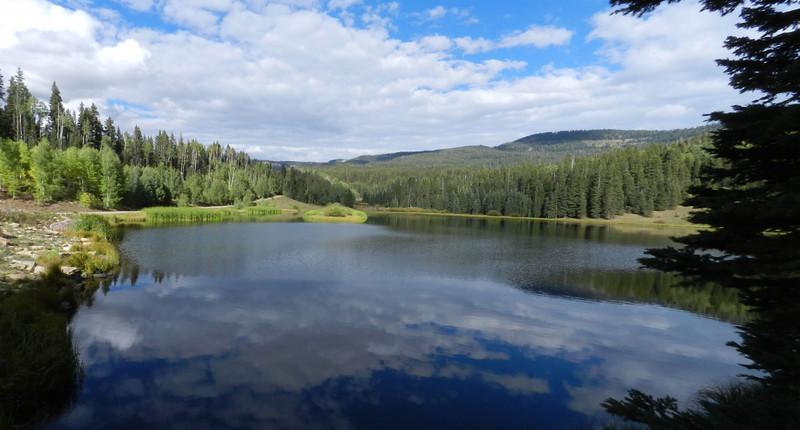 Henderson Lake pano.jpg