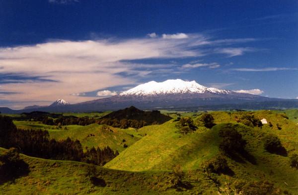 NZ in November 2001