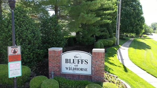 17212 Bluffview Ridge Place