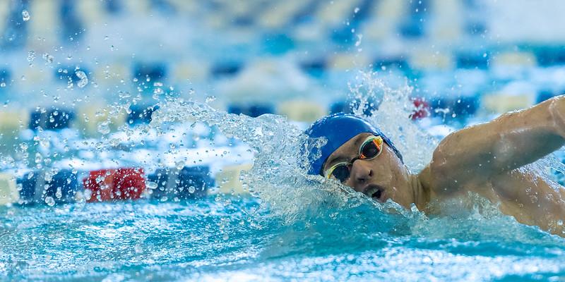 2018_KSMetz_Feb17_SHS Swimming_ State Finals_NIKON D5_5078.jpg