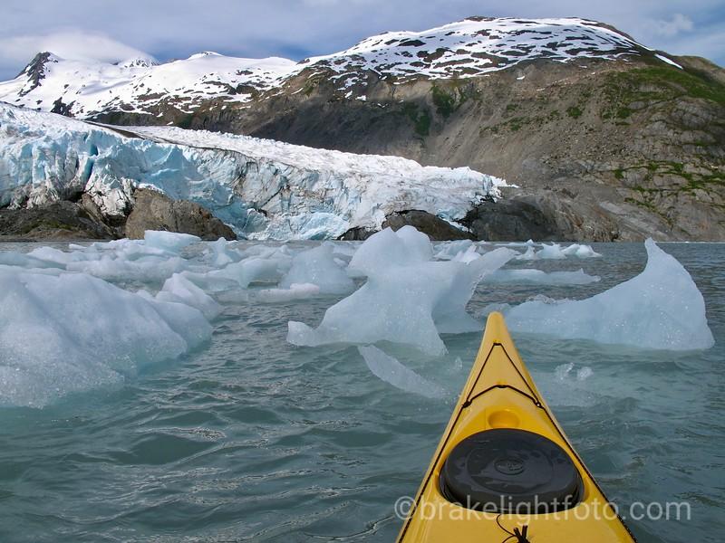 Mini Bergs in front of the Portage Glacier