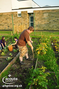 August - Allotment Work