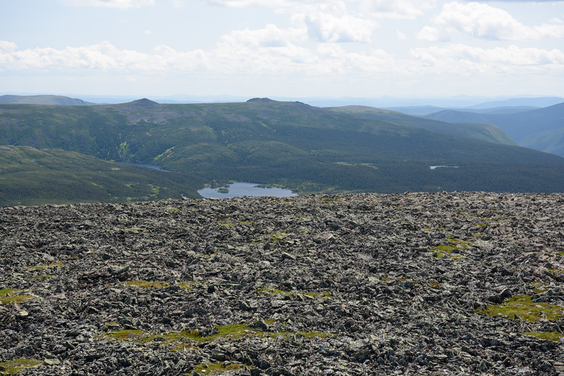 Img2019-07-29-130014-Mont Jacques-Cartier.jpg