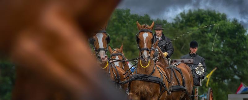 Slabroekse Paardendagen 2016 Galerij